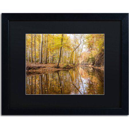 Trademark Fine Art Beaver Creek 3 inch Canvas Art by Jason Shaffer, Black Matte, Black Frame, Size: 16 x 20, Assorted