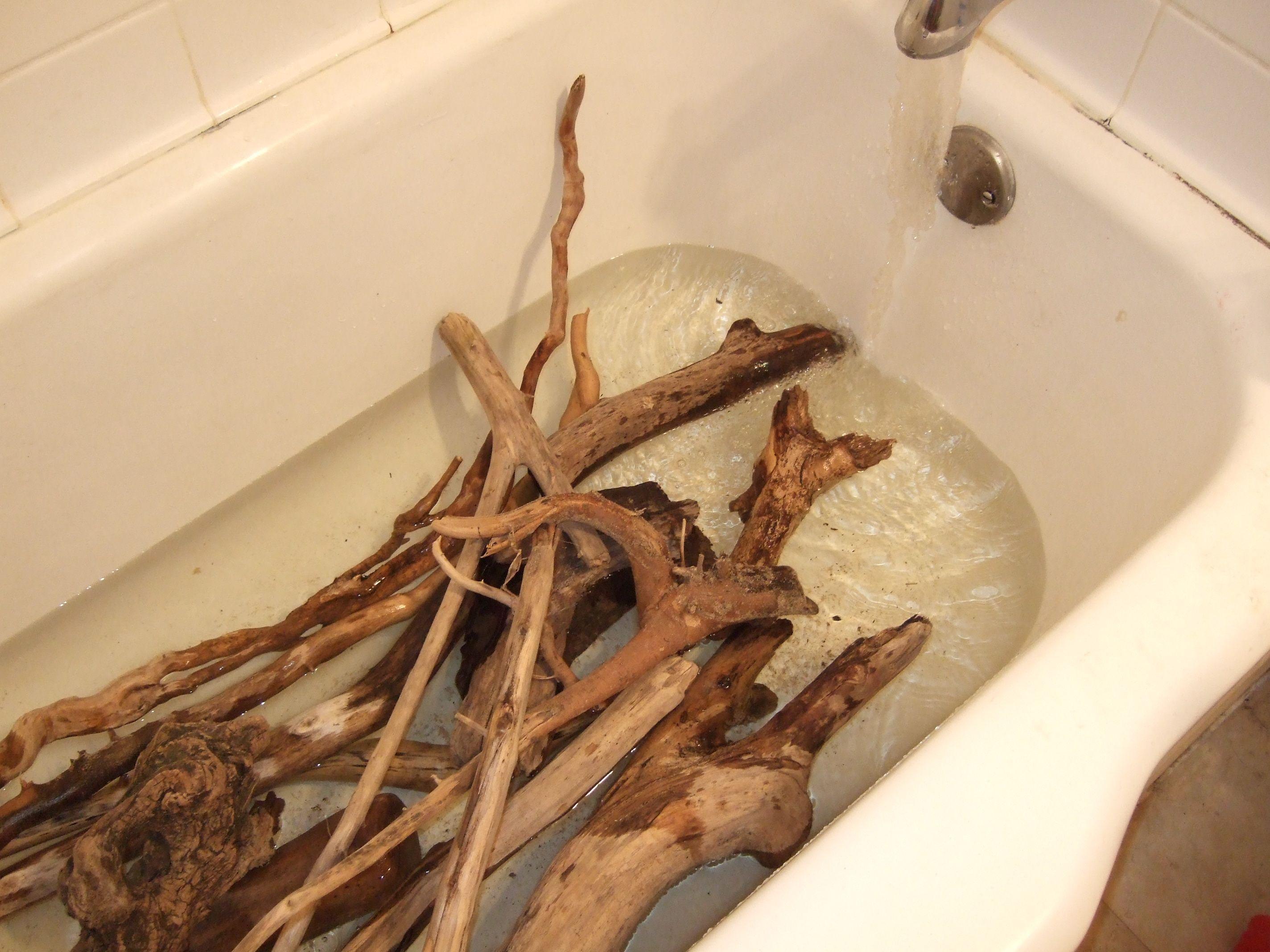 How Sterilize Driftwood Soak The Driftwood In A Bathtub