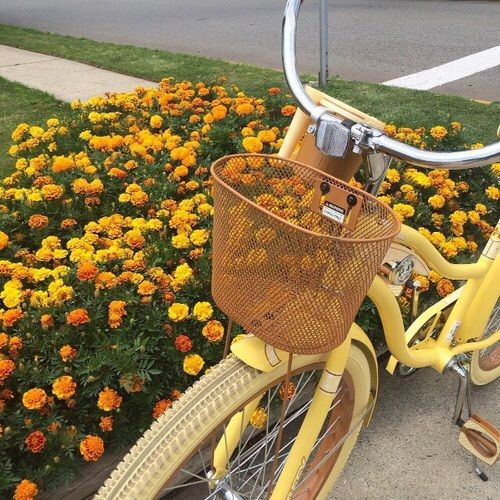 yellow aesthetic | Tumblr shared by SammyKay on We Heart It
