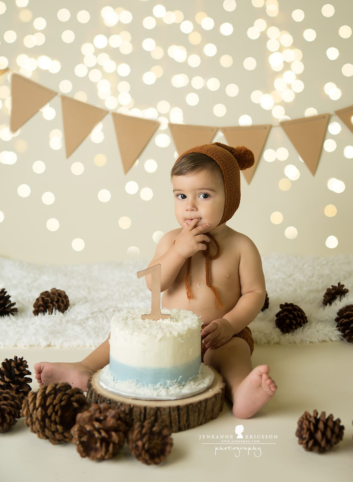Winter Lights Pinecones Boy First Birthday Cakesmash Woodland