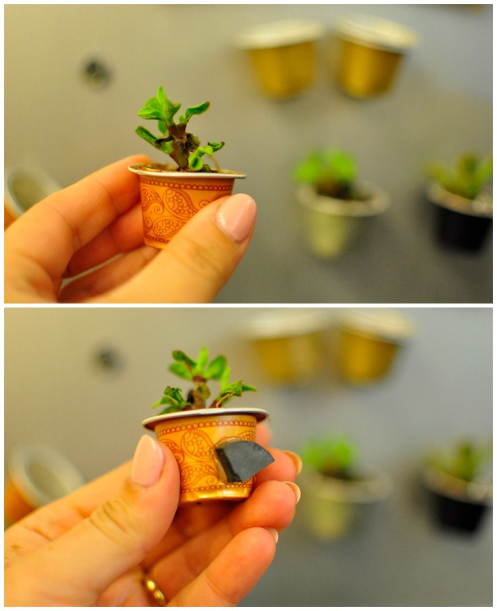 Great Idea Coffee Capsule Recycle Craft Coffee Pods Crafts Recycle Coffee Pods Coffee Pods Art