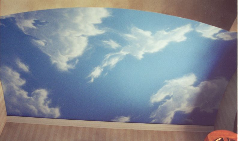 Painting clouds on ceiling easy ceiling designs for Ceiling cloud mural