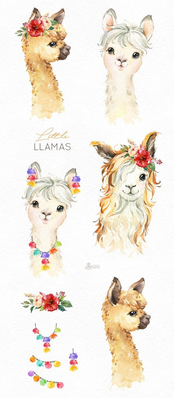 Little Llamas. Watercolor animals clipart, alpaca, portrait, flowers, kid, country, cute, baby llama, nursery art, peru, nature, baby-shower