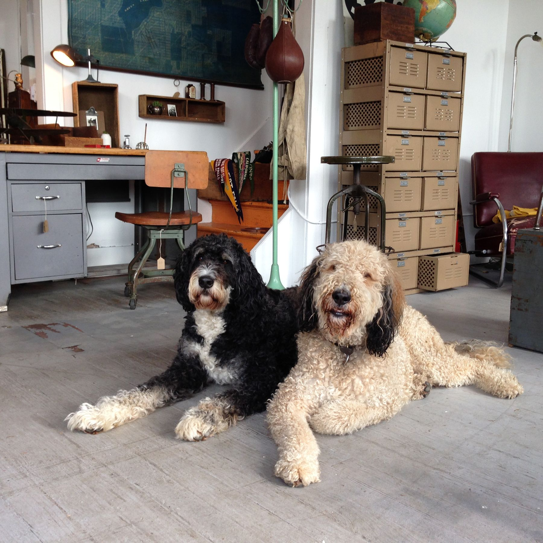 George and Homer keeping and eye one the shop.