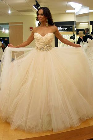 Tlc Official Site Wedding Dress Champagne Wedding Dress Pictures Wedding Dresses