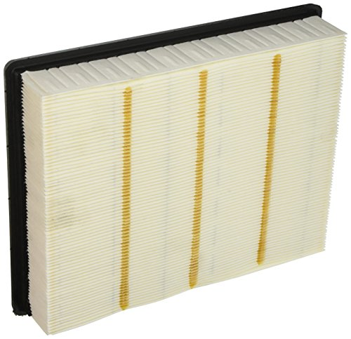 ACDelco A3181C Professional Air Filter in 2020 Acdelco