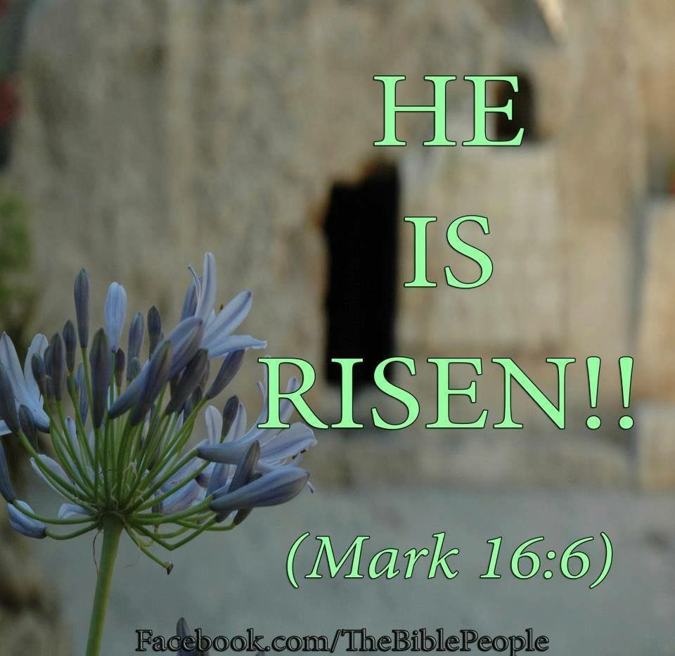 Easter Bible Quotes Mark 166 Jesus Is Risen  Easter  Pinterest  Bible Scriptures