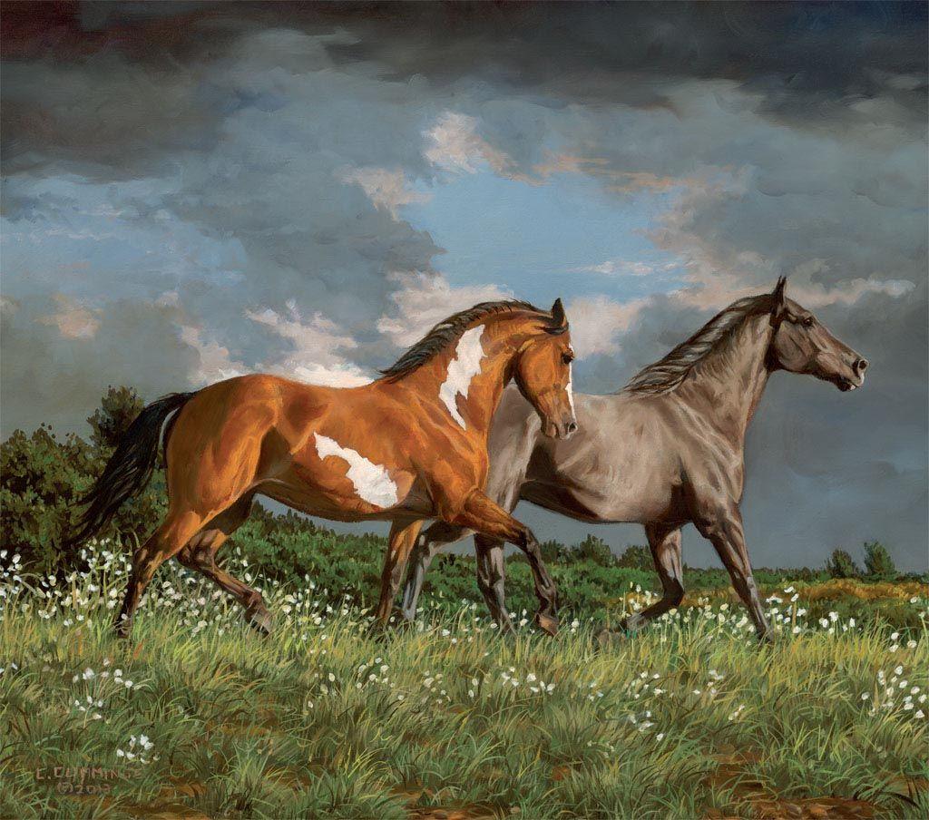 Popular Wallpaper Horse Art - caf97674ab3dcb6cd0867422d9a2c990  Image_8310098.jpg