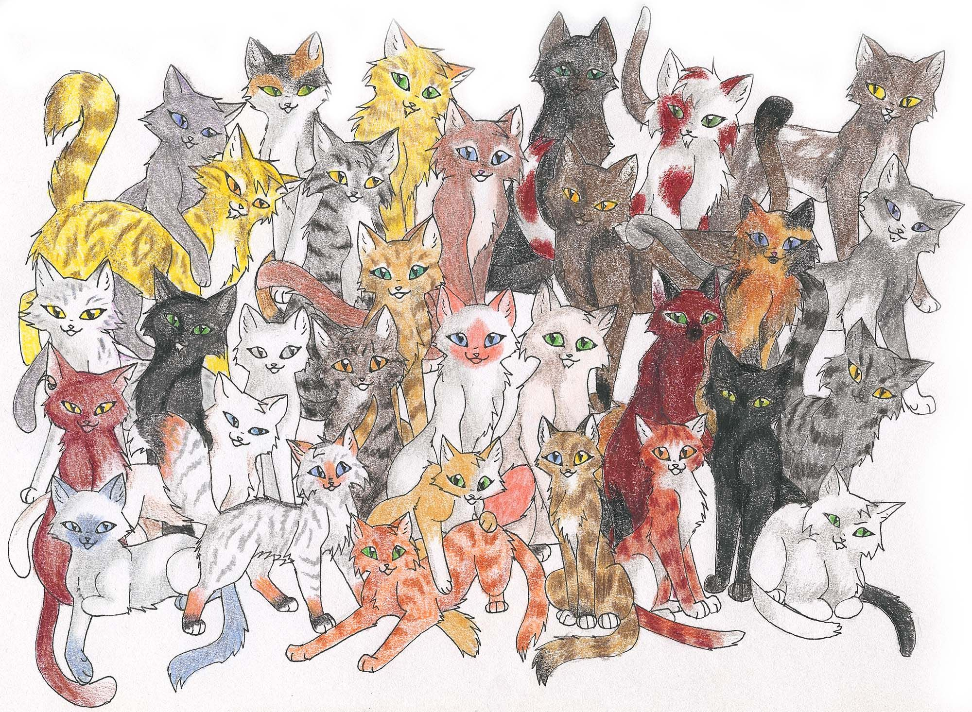 Warriors series fans Thunderclan Warrior cats clans