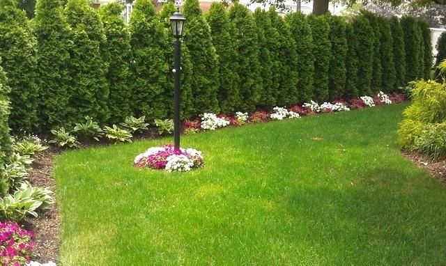 Ideas Of Landscape Picture Of Landscape Ideas For Corner Lot Landscaping Landscape With Images Backyard Landscaping Designs Large Backyard Landscaping Privacy Landscaping