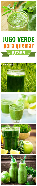 Esta deliciosa receta de jugo verde para quemar grasa te ayudará a perder esos kilitos de sobra. Sigue esta receta, complementa con una dieta saludable y baja de peso hoy mismo.  #Nutrición y #Salud YG > nutricionysaludyg.com