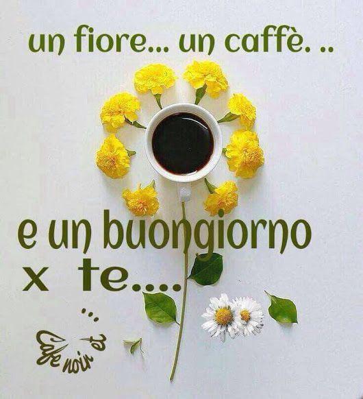Buon weekend gandhi pinterest buongiorno for Buon weekend immagini simpatiche