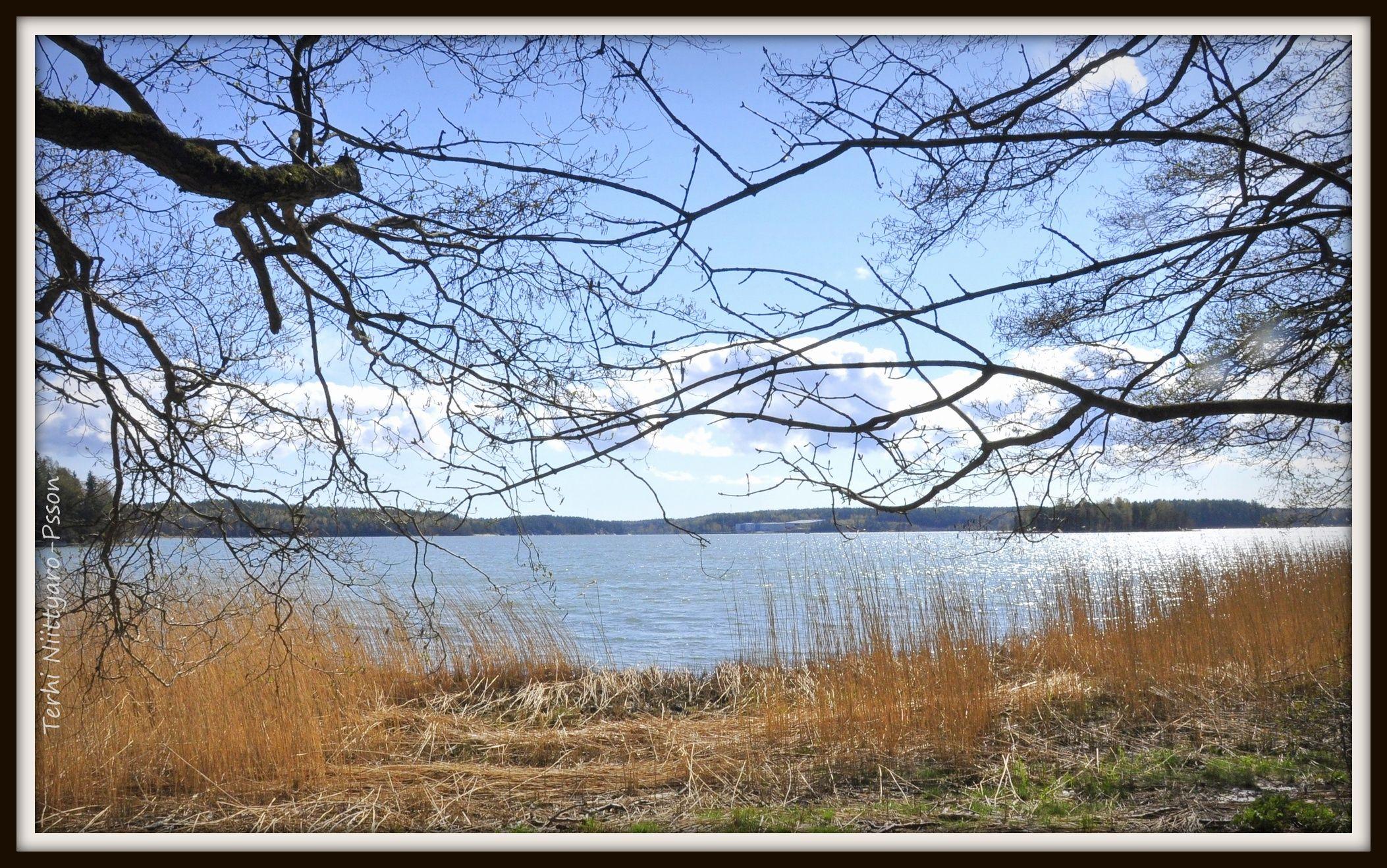 Parainen, Munkvikin luontopolku (naturetrail), toukokuu 2014. Kuvaaja Terhi Niittyaro-P.
