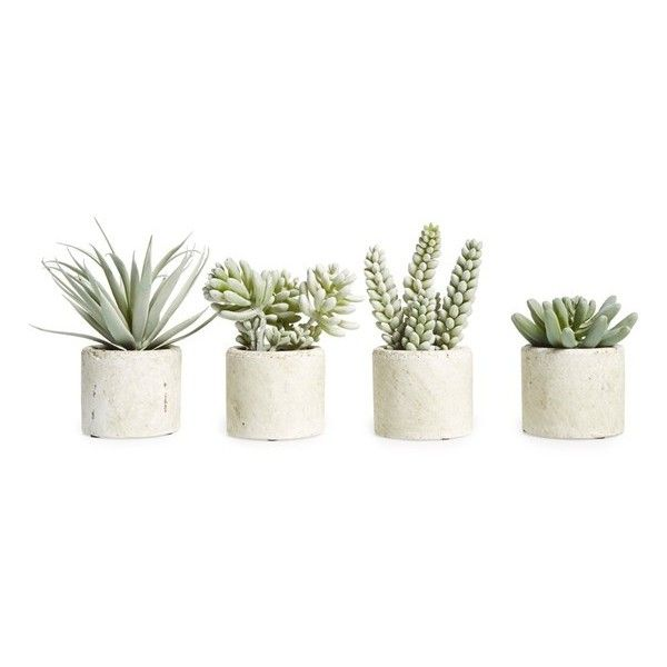 Allstate mini artificial succulent 11 liked on polyvore - Cactus decorativos artificiales ...