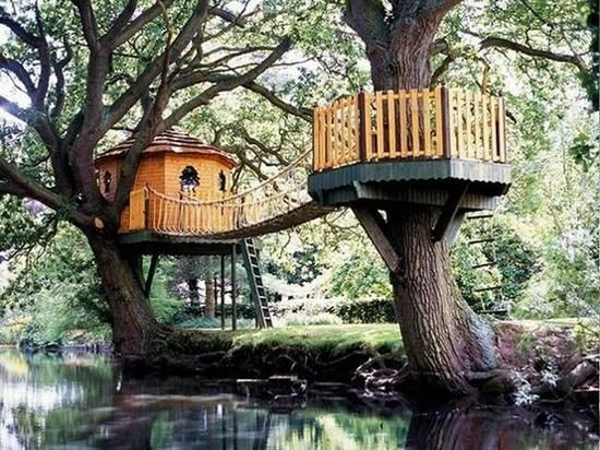 Building A Tree Perch, Tree Deck Or Treehouse Is A DIY Backyard Project  That Will