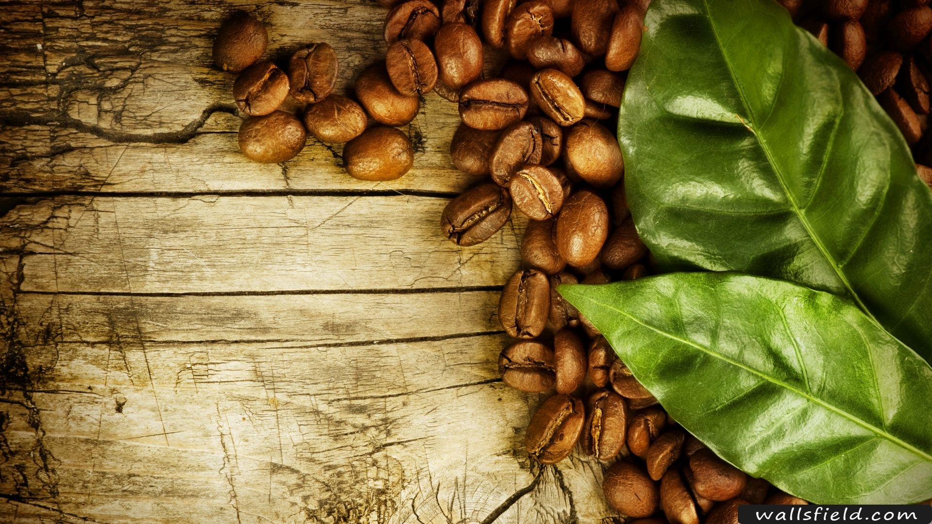 Coffee Beans Desktop Background you can view, download and comment on coffee beans and leaves free