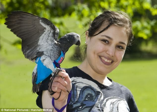 We all love our animals! Let's celebrate these Animals who have saved Human lives. http://ow.ly/y9zC9 #pets