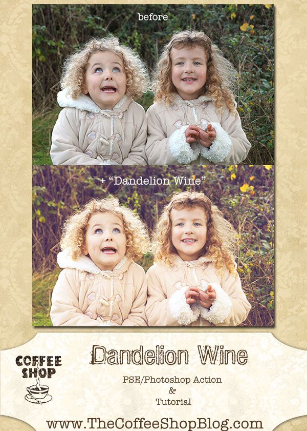 Free tutorial/action photoshop for editing with the Dandelion Wine effect!