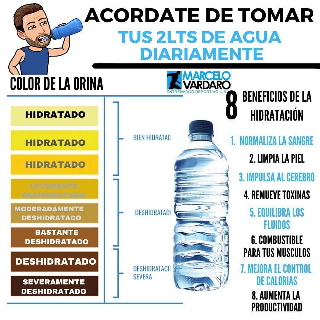 Rutinas Y Tips Para Entrenar En Instagram Recordá Siempre Beber Agua El Agua Es Un Componente Esencial Y El Más Importante De Nuestro Cuerpo Más De Un In 2020