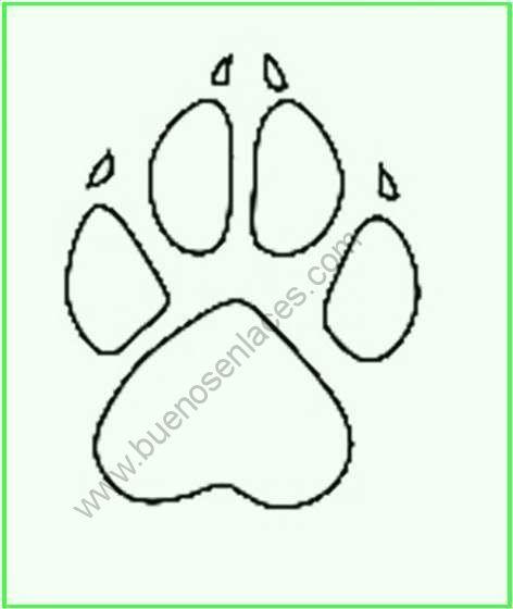 Resultado De Imagen Para Huellas De Perro Para Colorear Animales