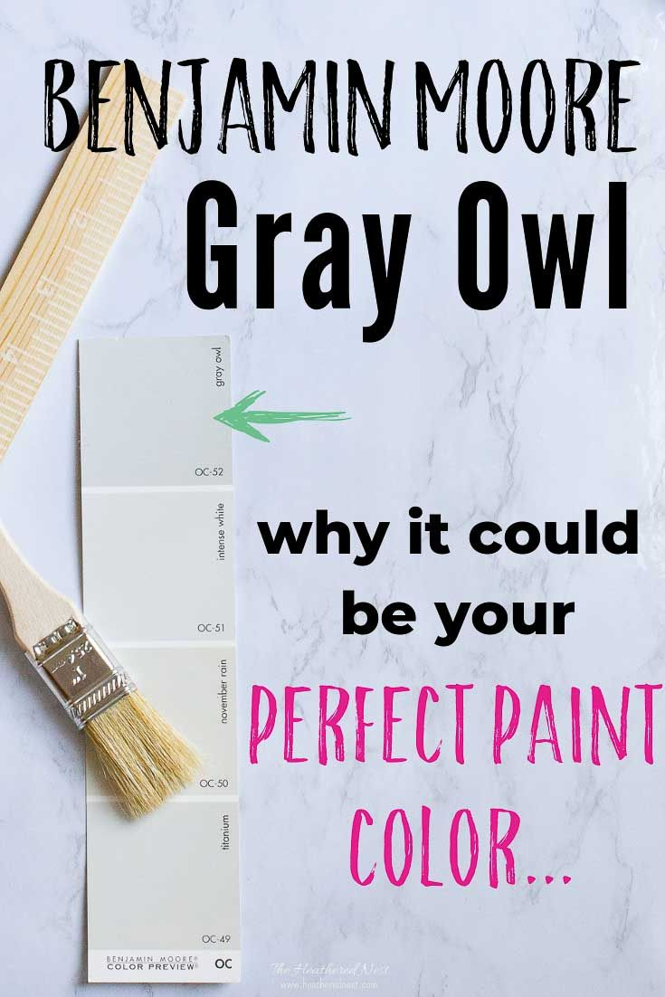 Best Is Gray Owl The Perfect Paint Color For Your Home Gray 400 x 300