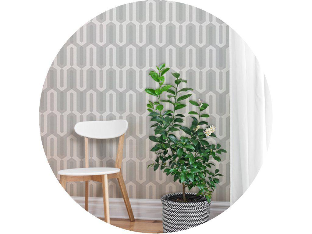 22af1feac19f Dizajnové tapety zmenia vzhľad a atmosféru vášho interiéru. Sú vhodné pre  aplikáciu na celú stenu