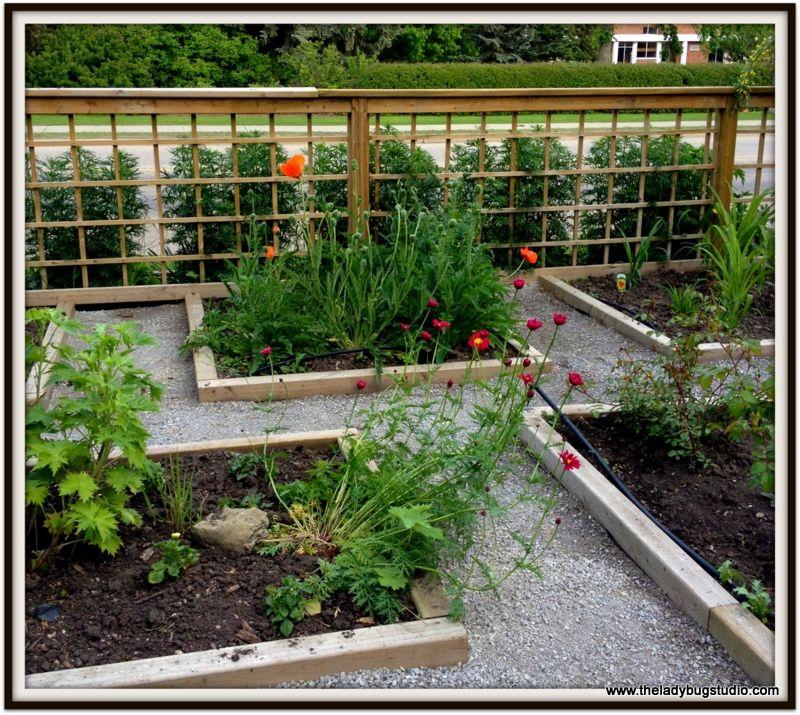 Raised Garden Beds Keep Pathway Weeds From Your Garden
