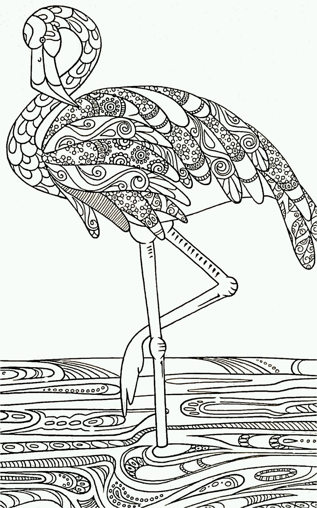 flamingo color page black and white drawing outline for decorative painting idea struisvogel - Flamingo Coloring Page
