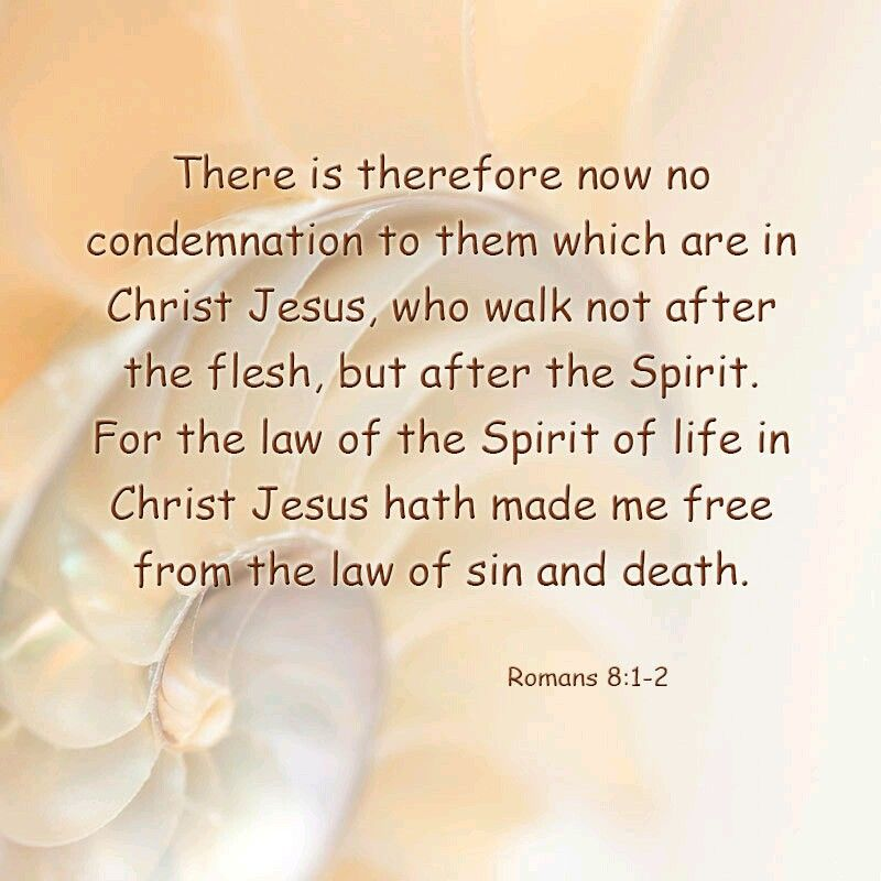 Pin by K Q on Bible Verse Bible apps, Jesus christ, Romans