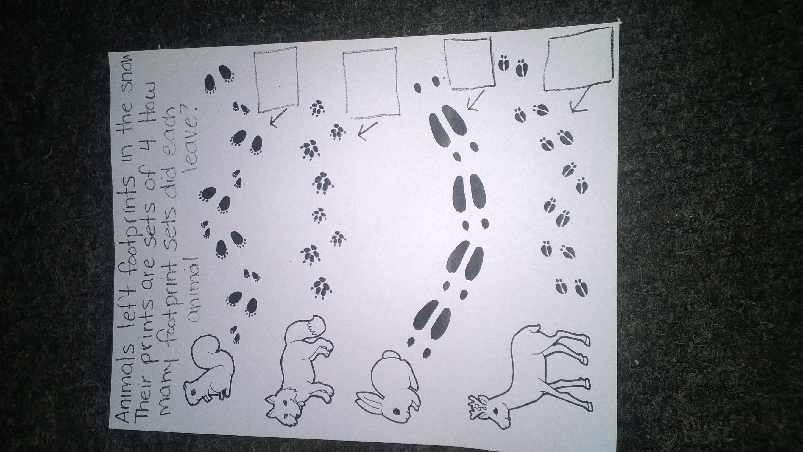 Counting The Animal Tracks Circle Sets Of Four Then Write