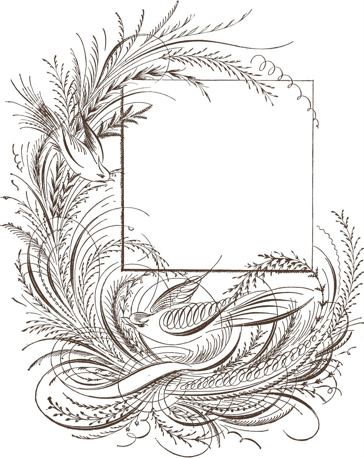 Cool drawings fancy. Free flower line bsquared