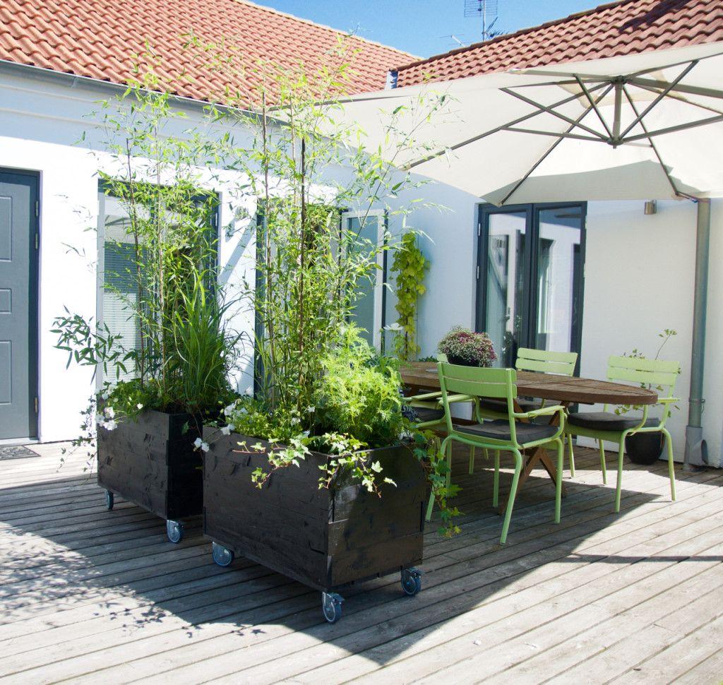 Photo of Arkitektens Trädgård – landskapsarkitekt – trädgårdsälskare – trädgårdsblogg