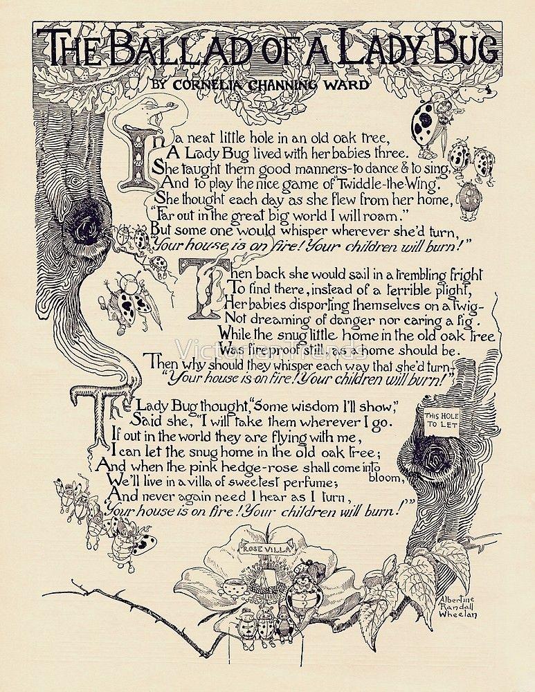 Illustrated childrens poem called ballad of a ladybug