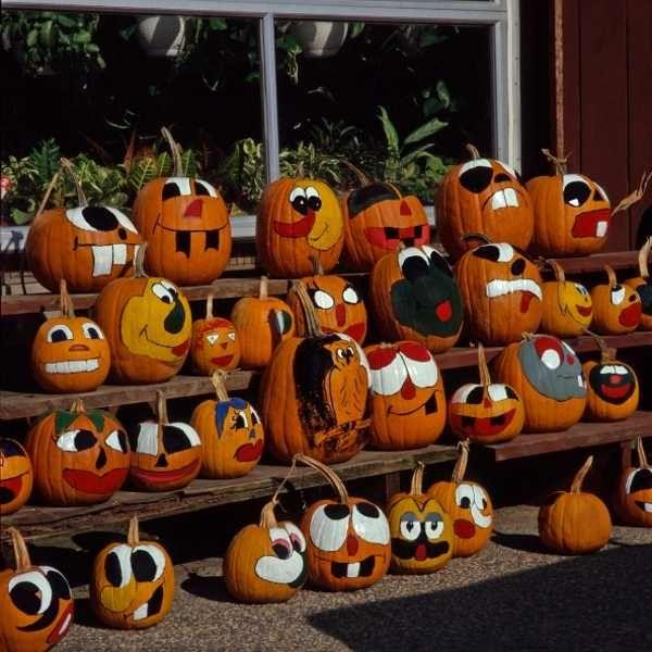 cat painted pumpkins - google search | jackolanterns | pinterest