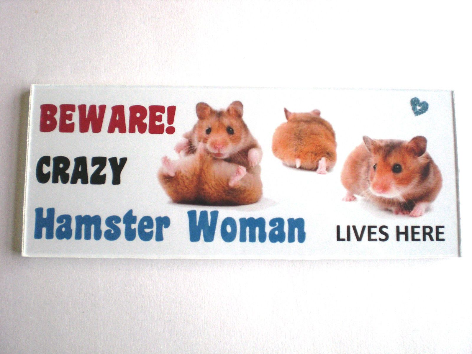 Male Chinese Dwarf Hamster Live Small Pets Petsmart Dwarf Hamster Chinese Dwarf Hamster Dwarf Hamsters For Sale