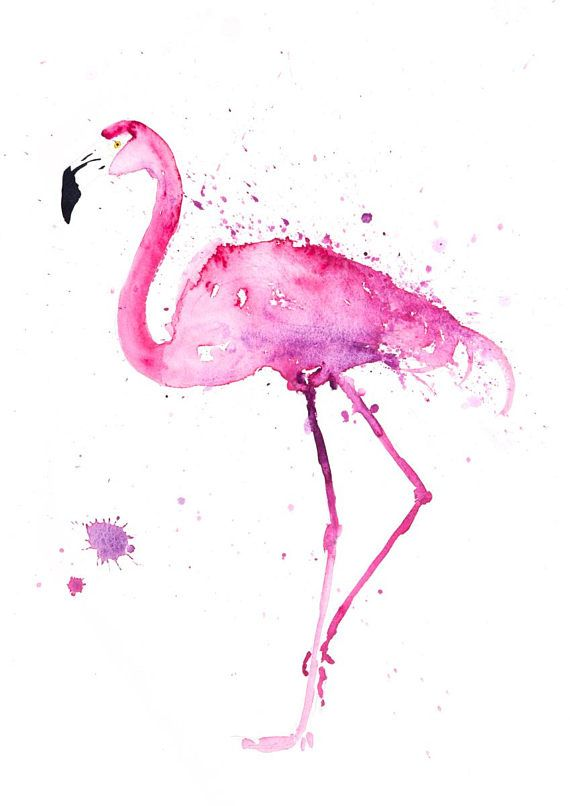 Flamingo Watercolour Painting Signed Limited Edition Print Of My