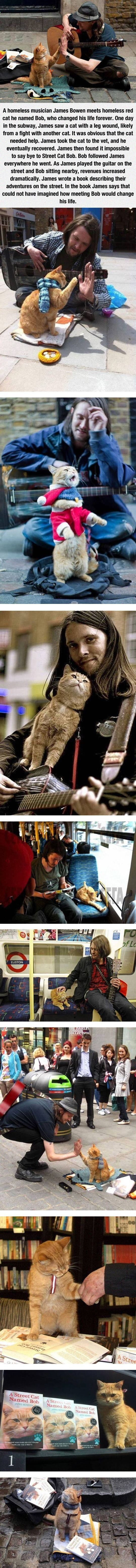 A Homeless Musician And His Cat Pictures, Photos