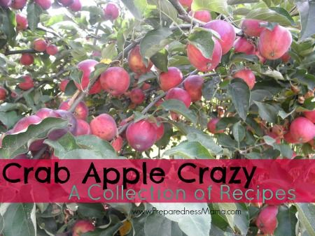 CrabApple Pie Filling #applerecipes