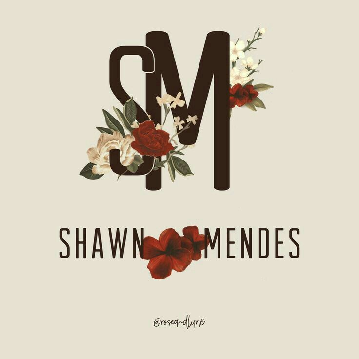 Shawn Mendes Floral Poster 22x34 The Album Poster Picture