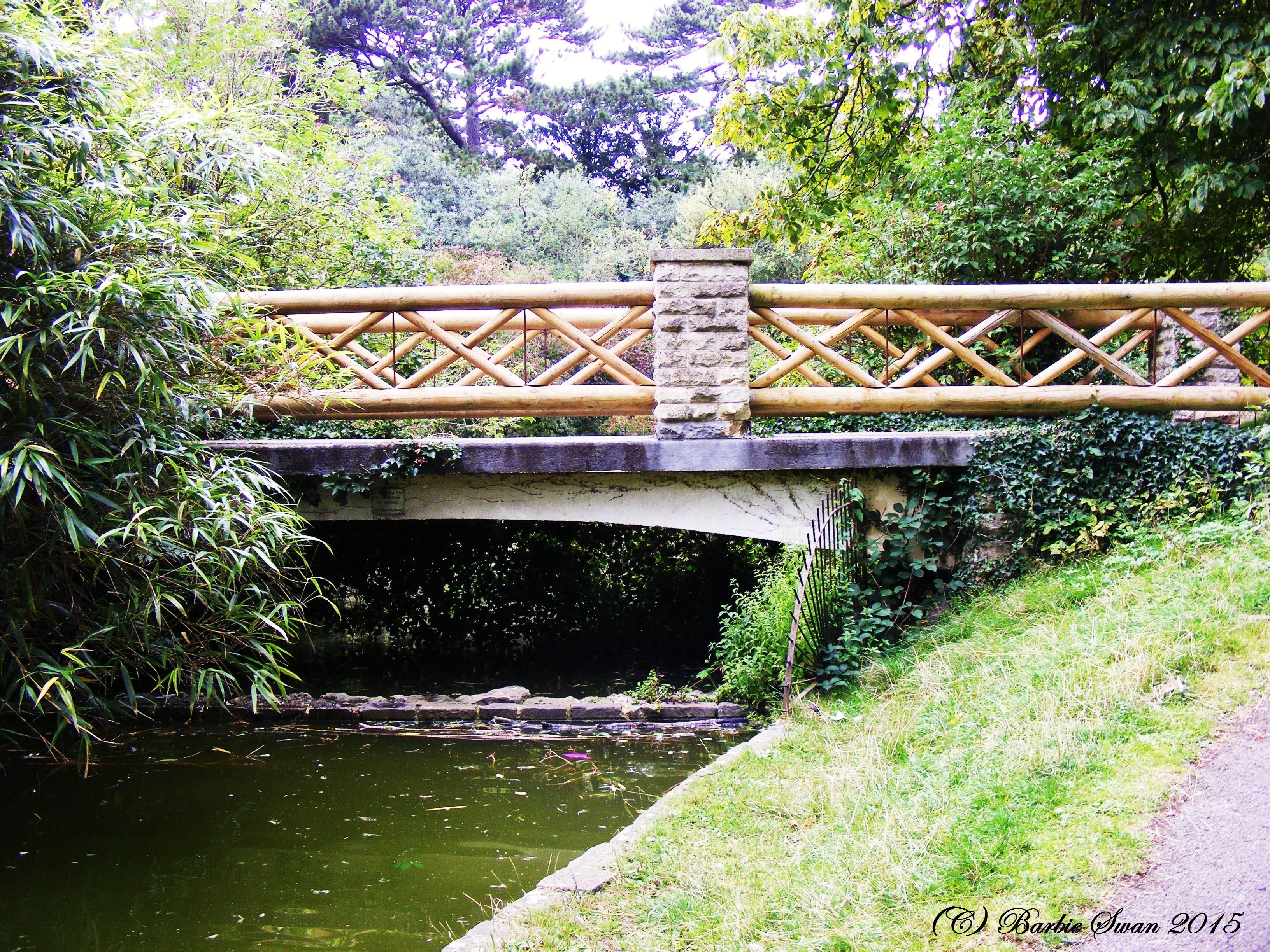 Wooden bridge seen in Royal Victoria park, Bath. Copyright (C ...