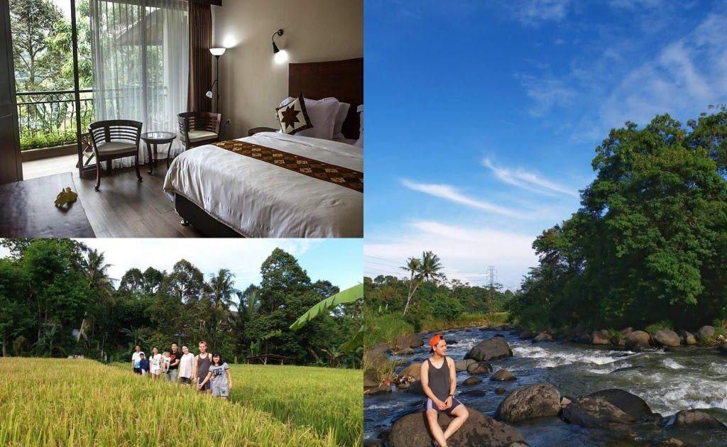 Keren 30 Villa Pemandangan Indah 7 Penginapan Murah Di Bogor Dengan Pemandangan Alam Keren Di Download Villa Tania Kolam Rena Di 2020 Pemandangan Villa Penginapan