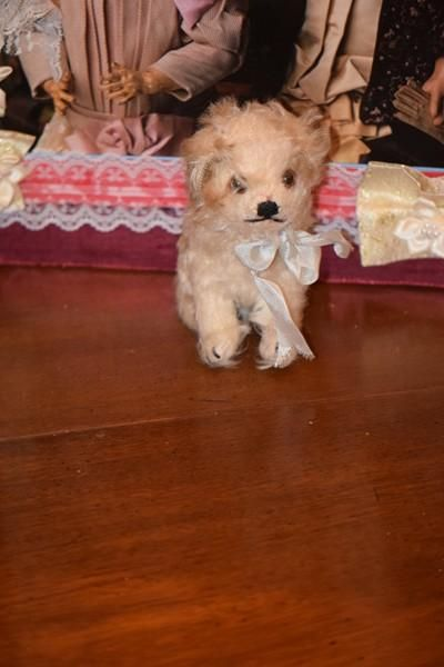 Wonderful Old Dog for Doll Mohair Jointed Head CUTE - Wonderful Old Dog for Doll Mohair Jointed Head CUTE