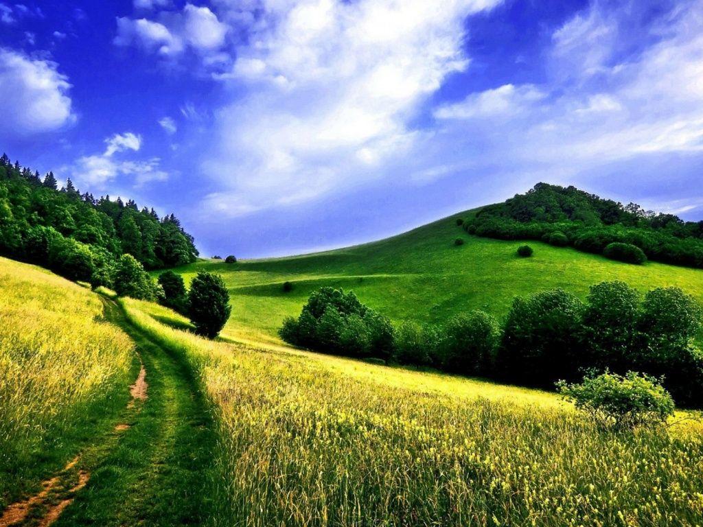 Summer Road Mountains Wallpapers Landscape Wallpaper Spring Landscape Nature Desktop Wallpaper