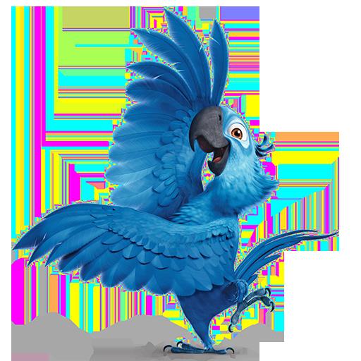 Rio Movie Massacres Parrot Welfare Heres Why I Love