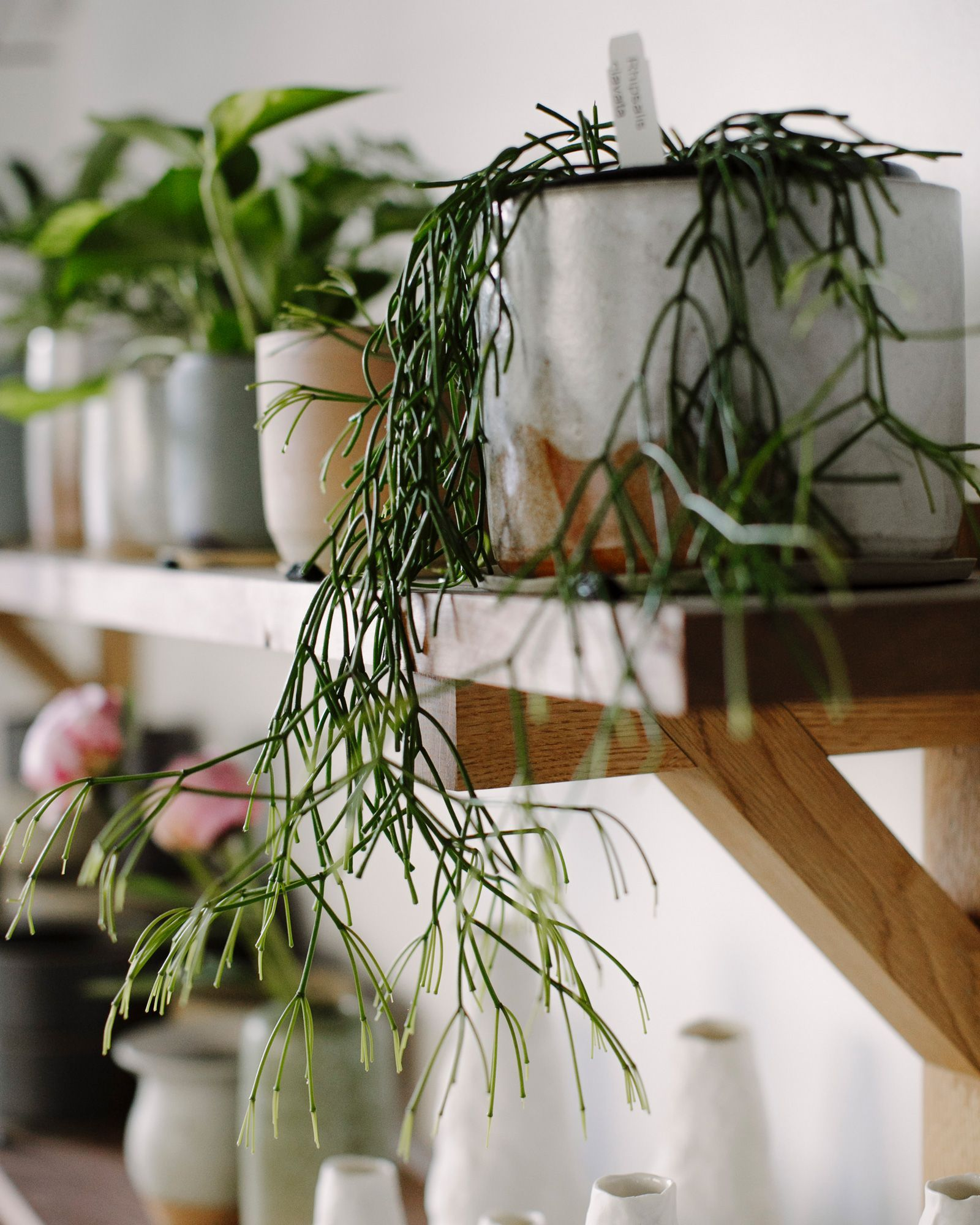 33+ Best Outdoor Creative, DIY Hanging Planter Ideas ... on Hanging Plant Stand Ideas  id=57496