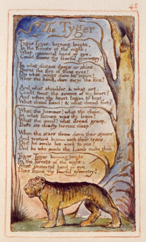 William Blake The Tyger William Blake Poems The Tyger William