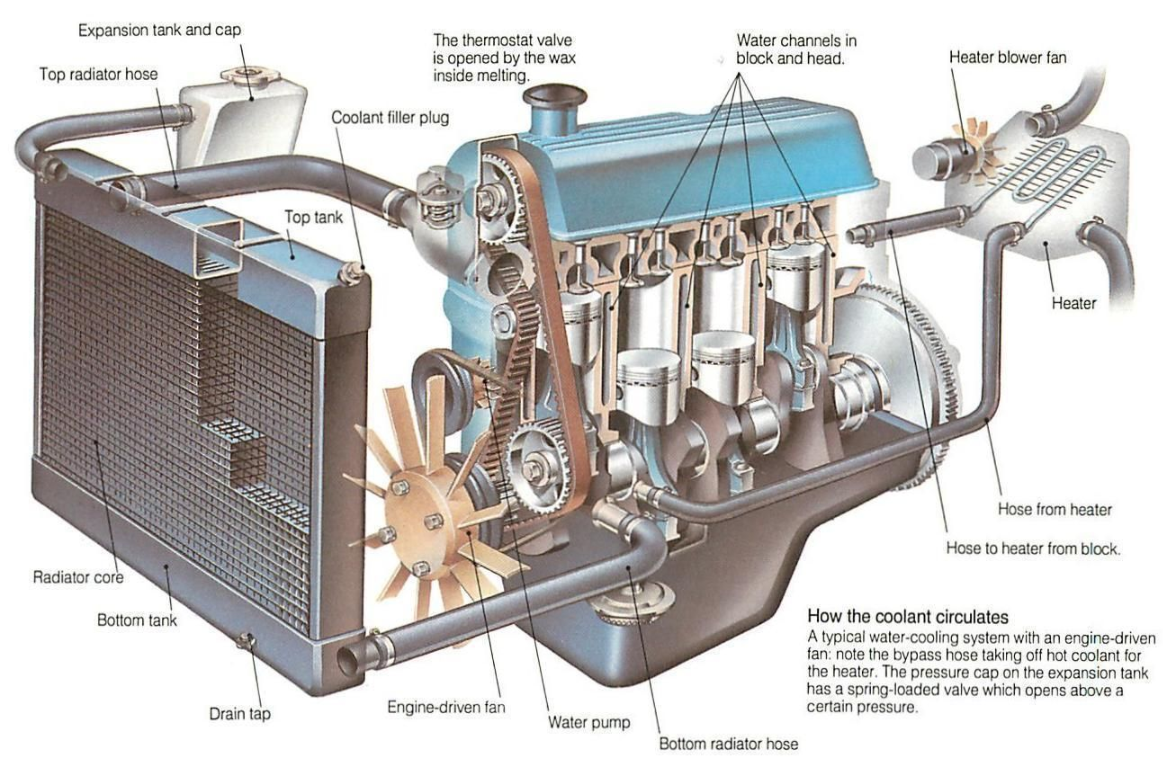 How The Cooling System Works 12 Jpg 1297 843 Car Radiator Car