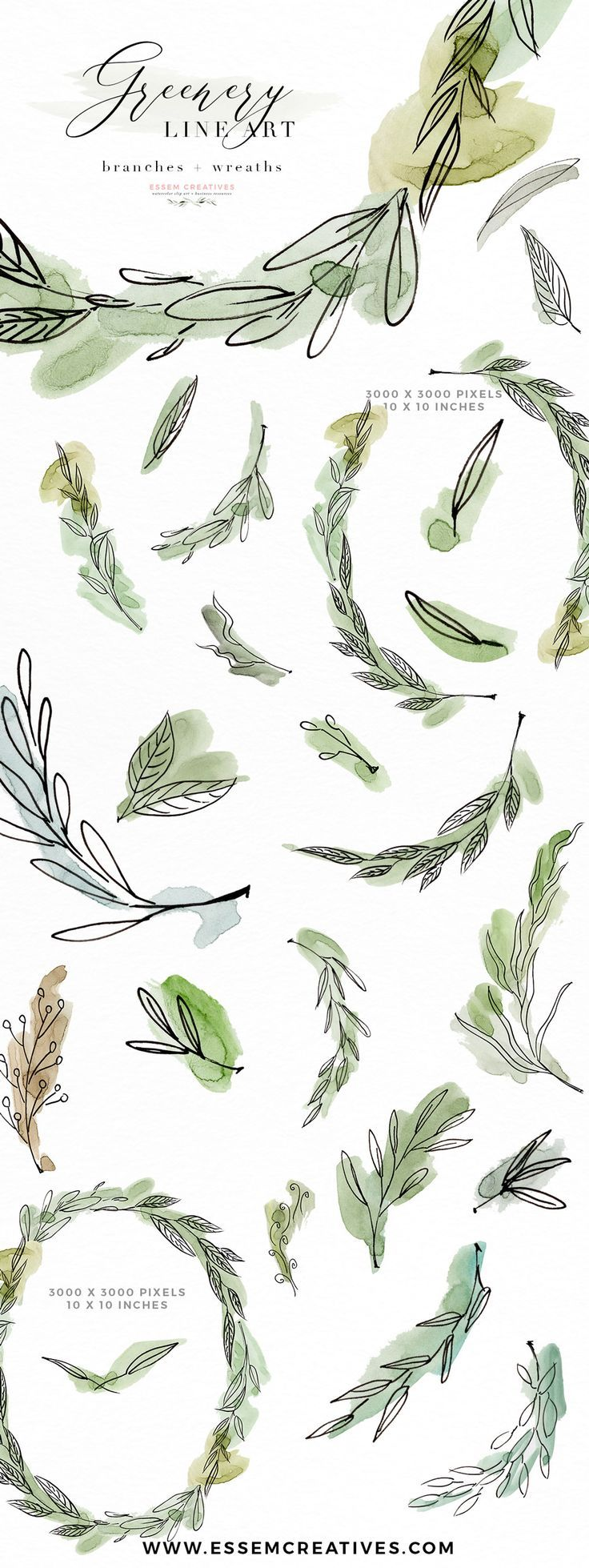 Photo of Greenery Line Art Watercolor Clipart, Olive Eucalyptus Branches, Tropical Fine Art Botanical Ink Graphics with Watercolor Splashes Essem creatives