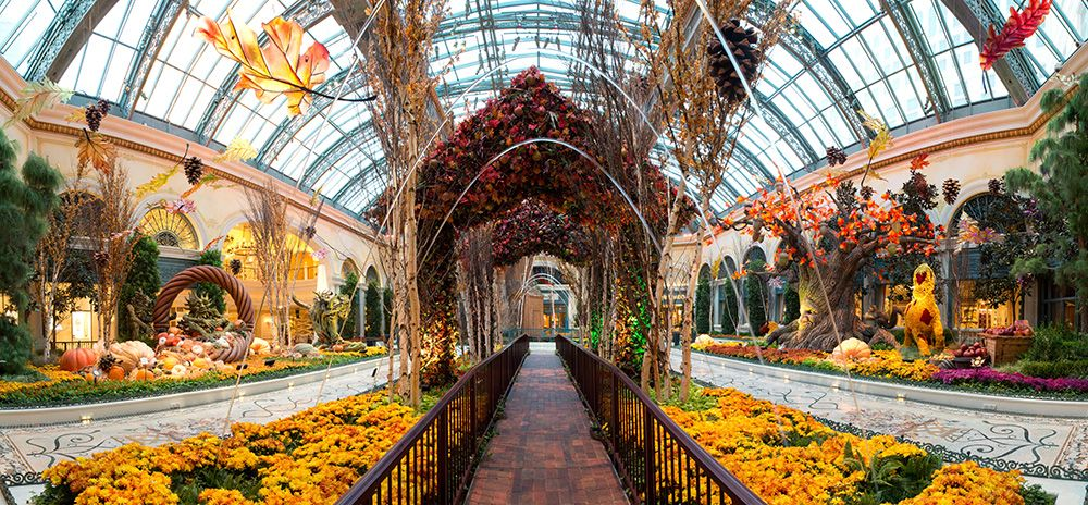 Bellagio Botanical Garden Fall 2015 Bellagio
