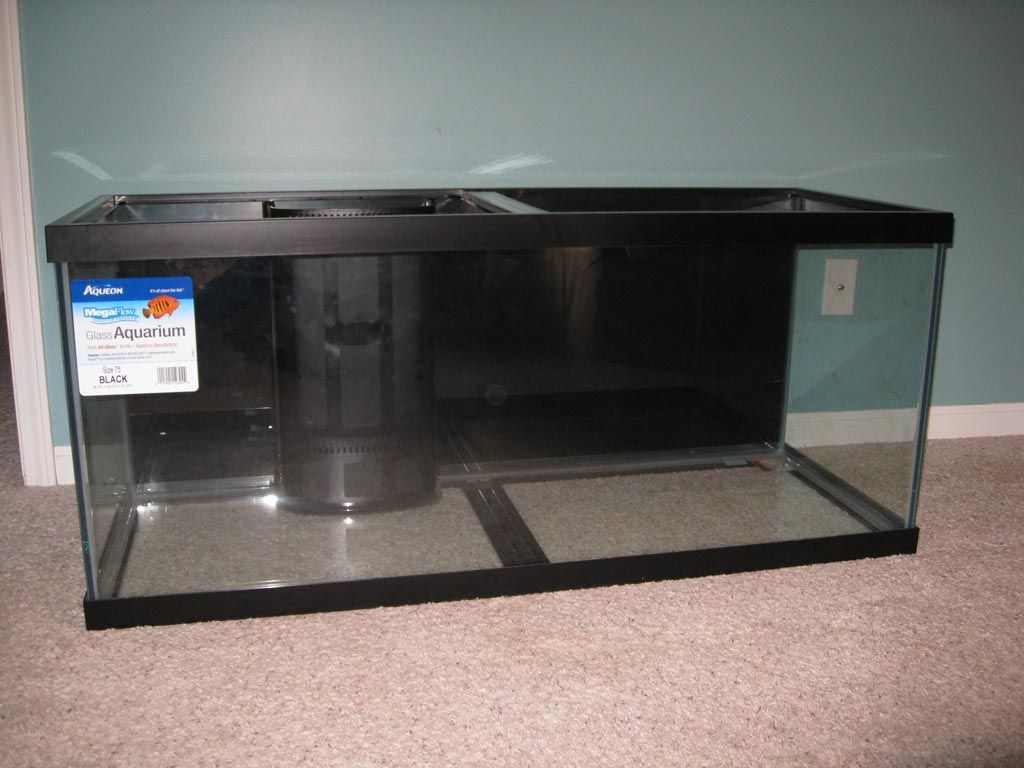 75 Gallon Glass Aquarium | Aquarium Ideas | Glass aquarium